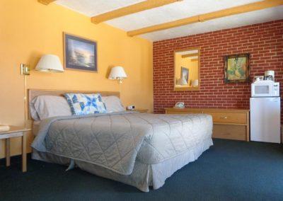 Superior Motel Room 1 King Bed